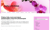 Fialky a orchideje
